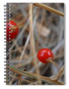 Red Asparagus Berries Spiral Notebook
