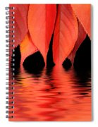 Red Autumn Leaves In Water Spiral Notebook