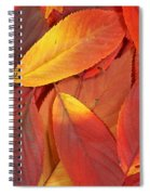 Red Autumn Leaves Pile Spiral Notebook