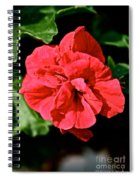 Red Begonia Spiral Notebook