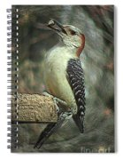 Red Bellied Woodpecker Spiral Notebook