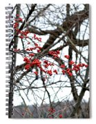 Red Berries White Sky Spiral Notebook