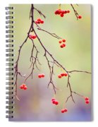 Red Berrries Spiral Notebook