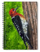 Red Breasted Sapsucker Spiral Notebook