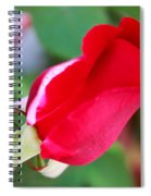 Red Bud Spiral Notebook