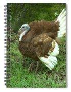 Red Burbon Turkey Spiral Notebook