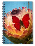Red Butterfly On Protea Spiral Notebook