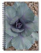 Red Cabbage Spiral Notebook