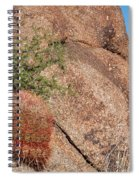 Red Cactus Rock Spiral Notebook