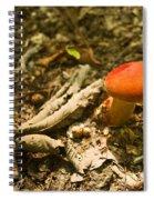 Red Caped Mushroom 1 Spiral Notebook