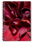 Red Carnation With Heart Spiral Notebook