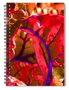 Red Chard Spiral Notebook