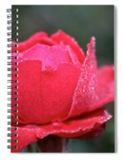 Red Crystal Petals Spiral Notebook