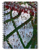 Red Crystal Refletcion Spiral Notebook