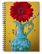 Red Daisy In Grape Vase Spiral Notebook