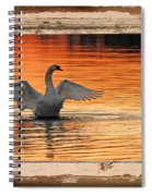 Red Dawn Swan Framed In Old Window Frame Spiral Notebook