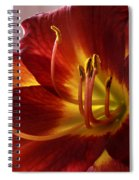 Red Day Lily Spiral Notebook