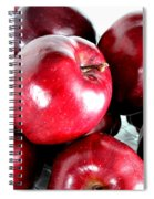 Red Delicious Apples Spiral Notebook