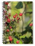 Red Dots Spiral Notebook