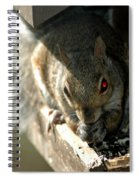 Red Eyed Demon Squirrel Spiral Notebook