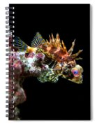 Red Eyed Scorpion Fish Spiral Notebook