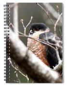 Red Eyes Spiral Notebook