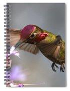 Red Face Spiral Notebook