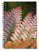Red Fern Spiral Notebook