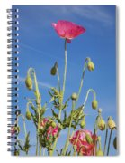 Red Flower Against Blue Sky Spiral Notebook