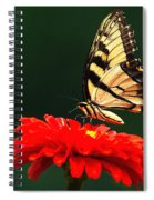 Red Flower And Butterfly Spiral Notebook