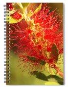 Red Flower Spiral Notebook