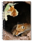 Red Fox Dreaming Spiral Notebook