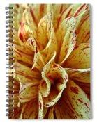 Red Freckles Spiral Notebook