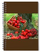 Red Fresh Plums In The Basket Spiral Notebook
