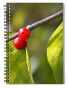 Red Fruits Spiral Notebook