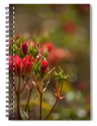 Red Glorious Spiral Notebook