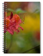 Red Groups Spiral Notebook