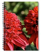Red Head Twins Spiral Notebook