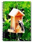 Red Headed Woodpecker Spiral Notebook