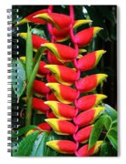 Red Heliconia Spiral Notebook