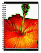Red Hibiscus With Special Effects Spiral Notebook