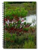 Red In Green Spiral Notebook