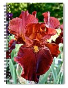 Red Iris Spiral Notebook
