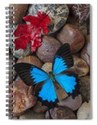 Red Leaf And Blue Butterfly Spiral Notebook