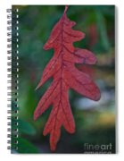 Red Leaf Hanging Spiral Notebook