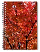 Red Leaves Black Branches Spiral Notebook