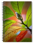 Red Magnolia Leaves With Bud Spiral Notebook