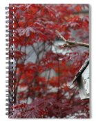 Red Maple Spiral Notebook