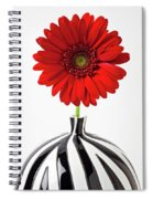 Red Mum In Striped Vase Spiral Notebook