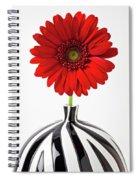 Red Mum In Striped Vase Spiral Notebook